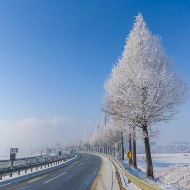 'LG V30'로 겨울사진 촬영하는 노하우 7가지