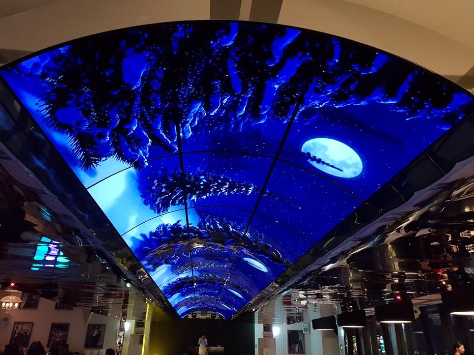 서울 드래곤시티 스카이킹덤 천장에 설치된'올레드 사이니지 월'