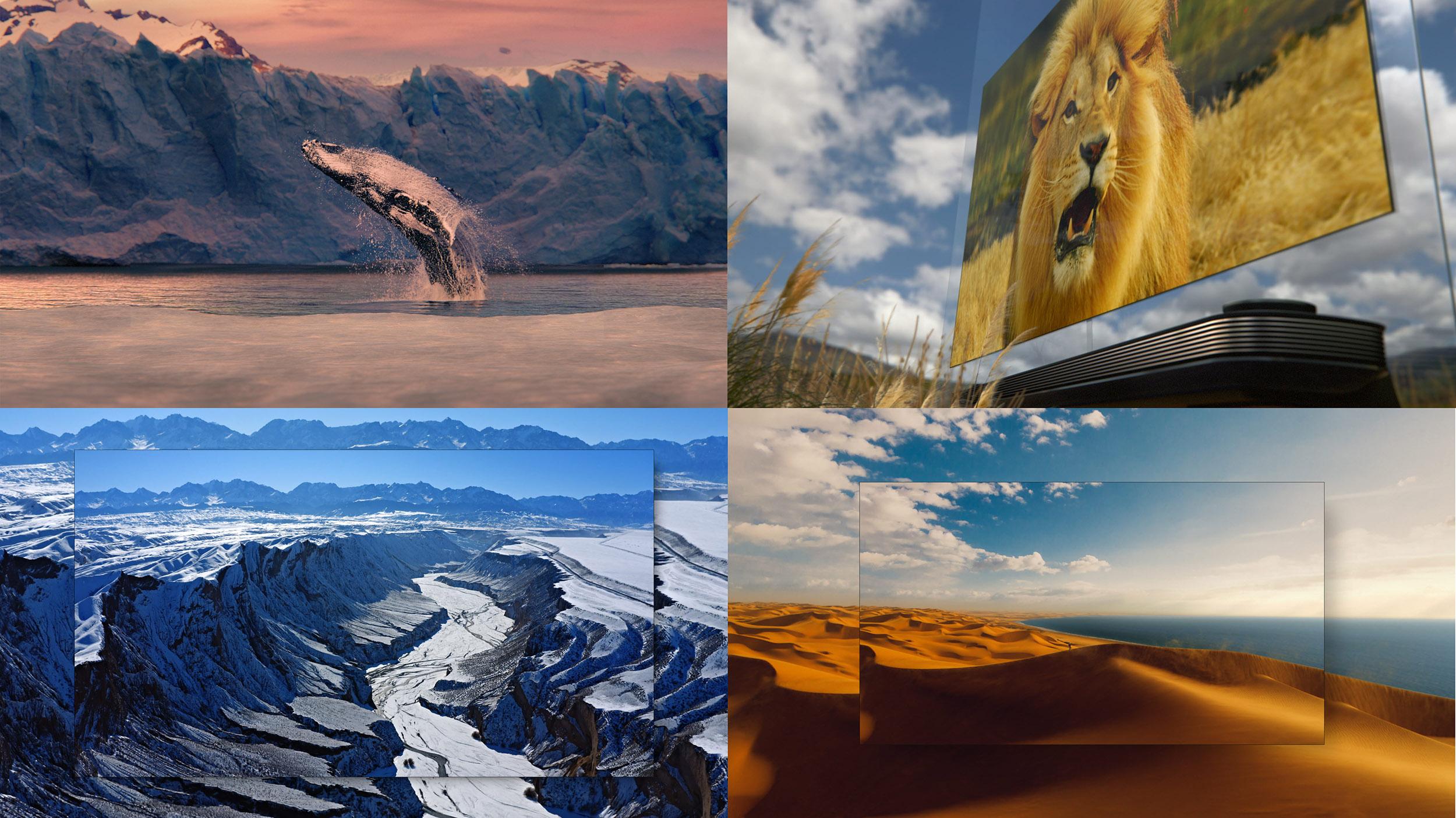 LG전자는 아르헨티나, 남아프리카공화국, 나미비아, 중국 등 신비로운 자연의 모습을 LG 올레드 TV로 생생하게 보여준다는 컨셉의 TV CF를 22일 온에어한다. 새로운 LG 올레드 TV CF 속 주요 장면.