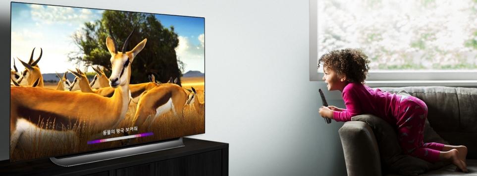 LG 올레드 TV(모델명 : C9)