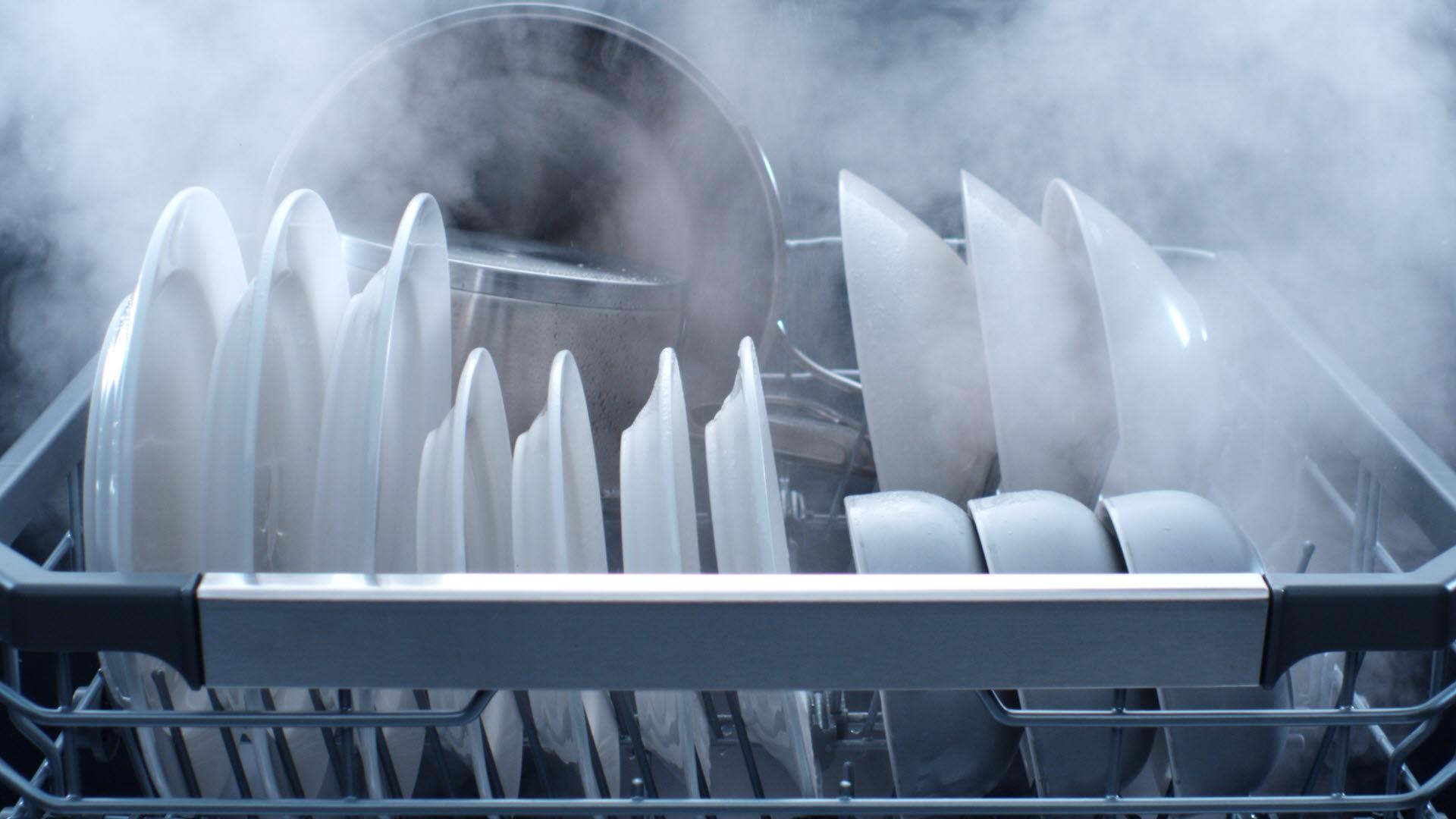 LG전자 디오스 식기세척기의 100도 트루 스팀 기능으로 식기를 살균하는 모습.
