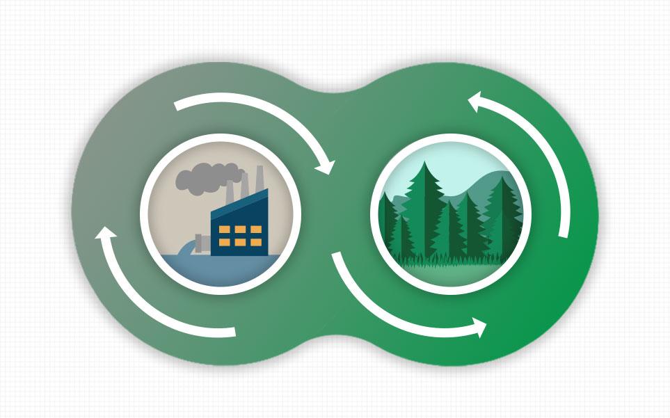 산림 조성으로 탄소 중립 과정을 보여주는 예시