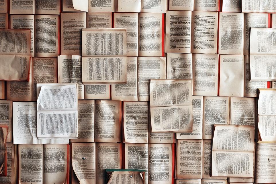 독서는 다양한 활동이 담겨 있는 학습 방법