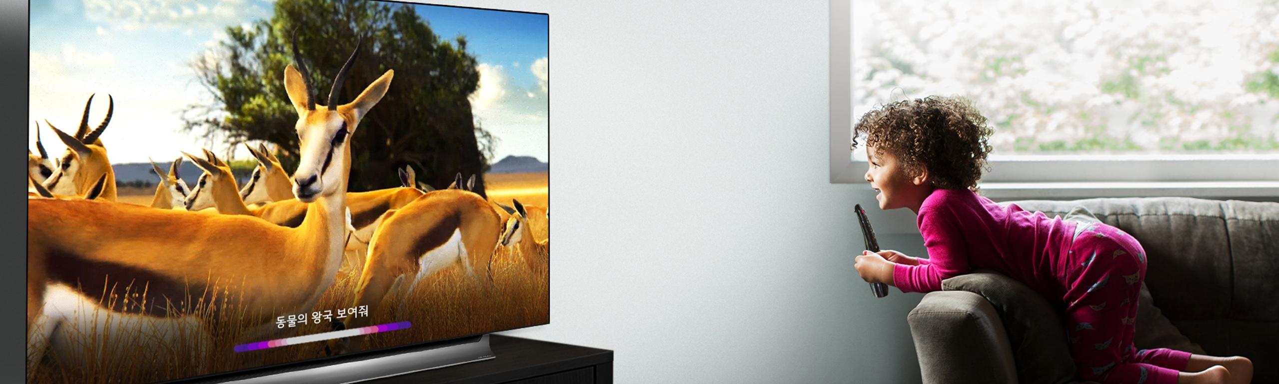 LG 올레드 TV AI ThinQ 생생후기 이벤트