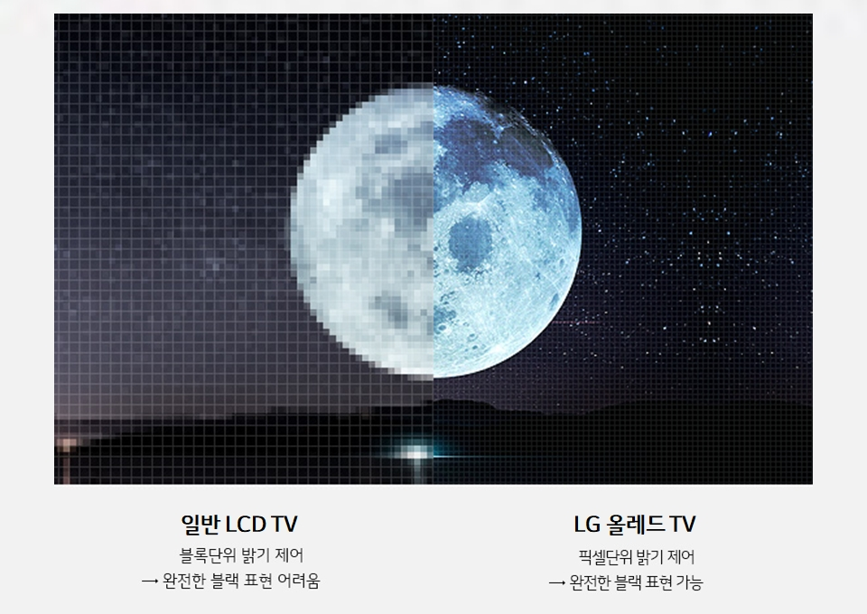 LCD TV 화질과 OLED TV 화질 비교
