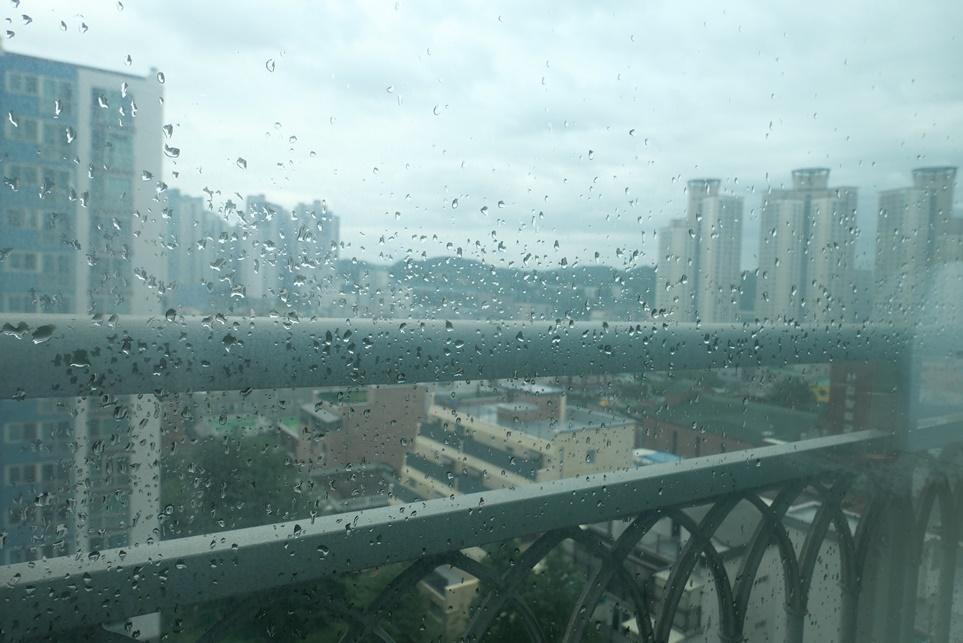 창 밖으로 비가오는 모습