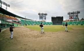 한국 야구의 신바람은 CYON과 닮은 꼴