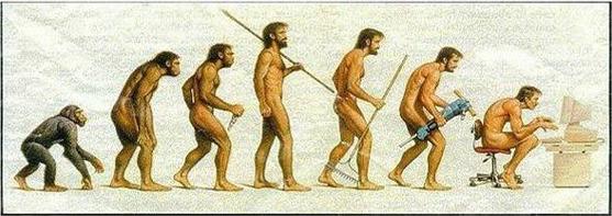 인간의 진화 단계 이미지