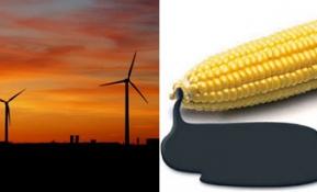 태양 에너지가 지구를 구할 수 있을까