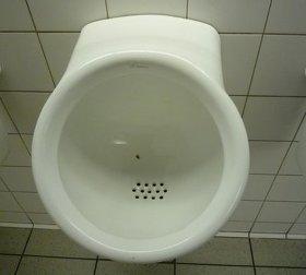 변기 사진