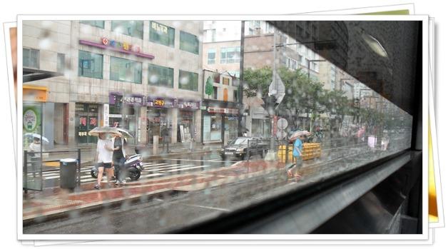 비오는 풍경 사진