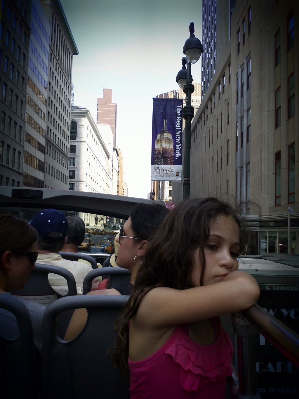 뉴욕 관람 사진