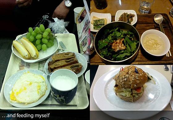 음식 사진