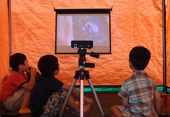 스크린에 집중하는 아이들 사진