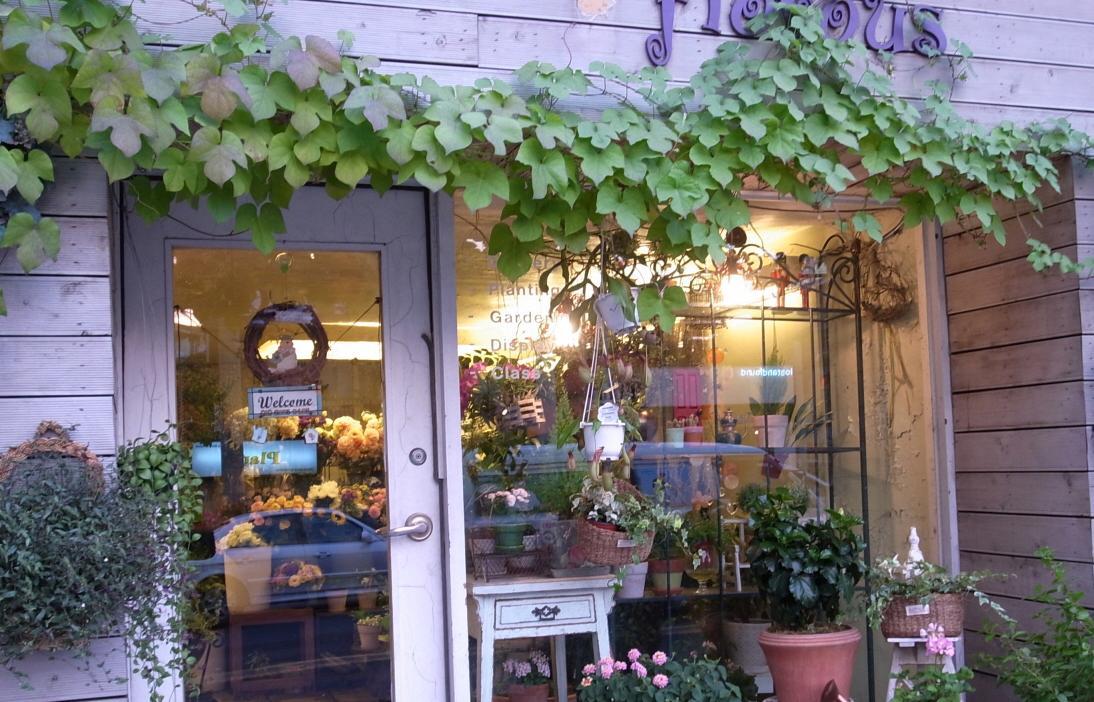 꽃집 사진